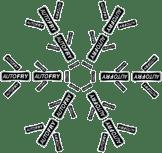 AutoFry Snowflake