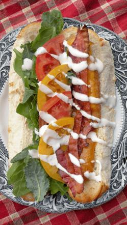 Chicken Bacon Ranch Recipe Photo